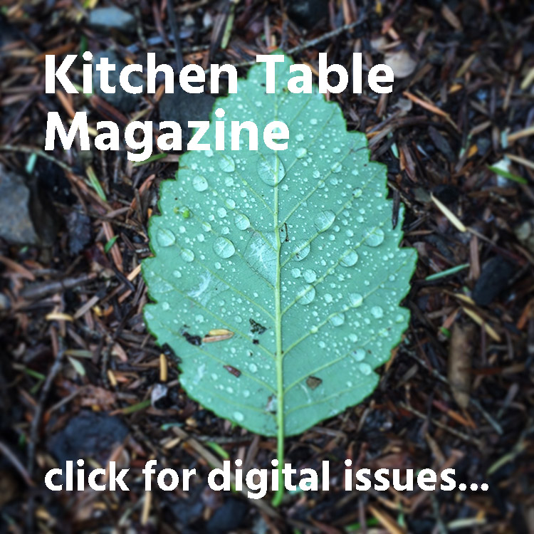 Kitchen Table Magazine digital issues button