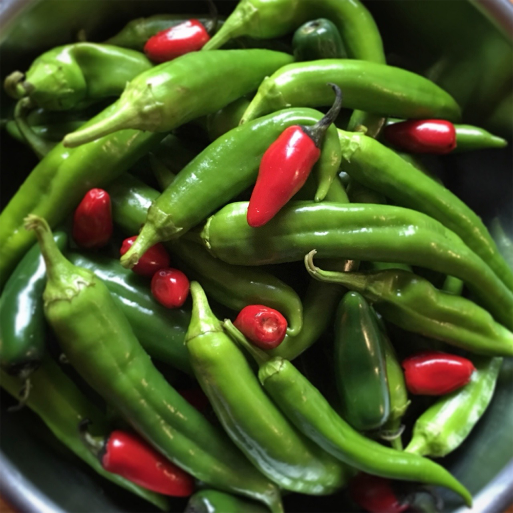 Kitchen Table Magazine hot peppers
