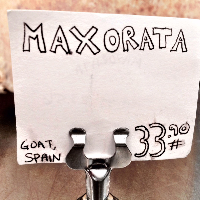Maxorta